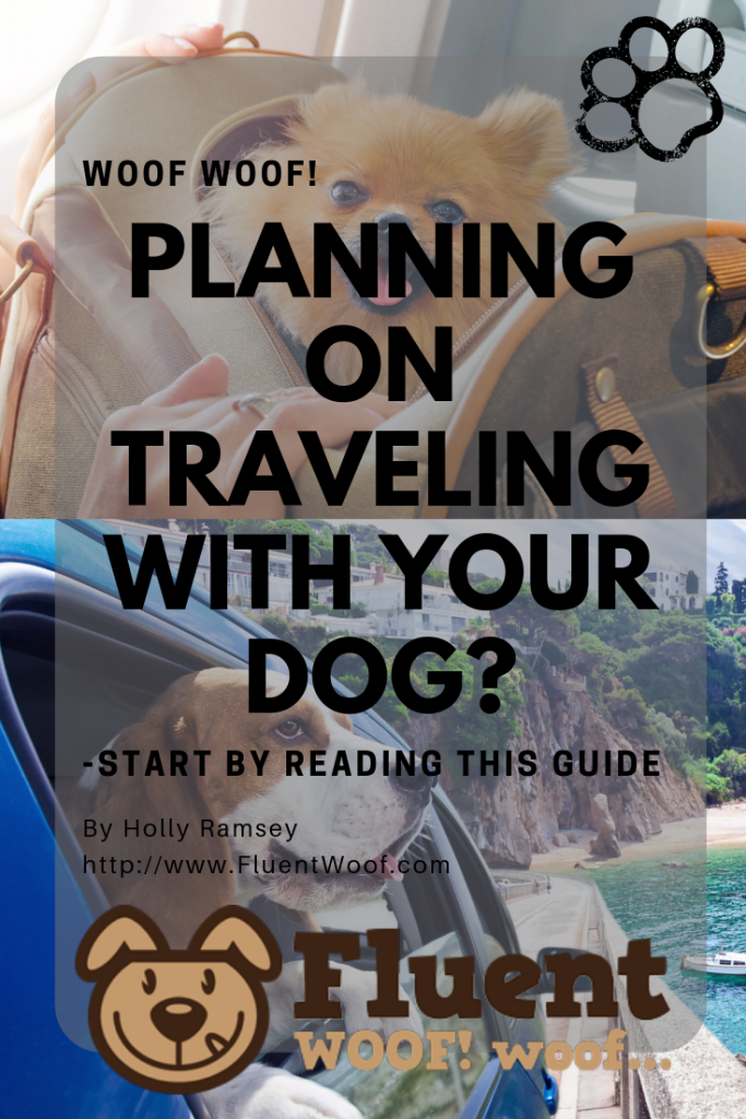 Planning On Traveling WIth Your Dog