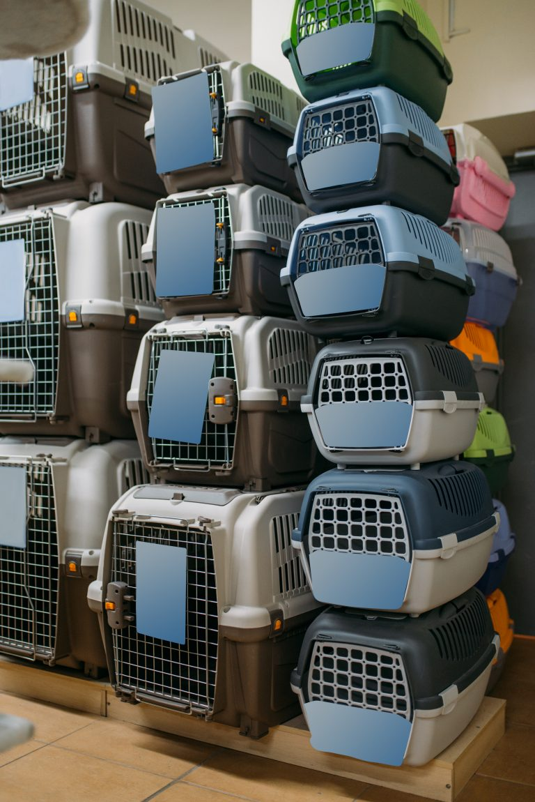 Traveling With Your Dog? Crates