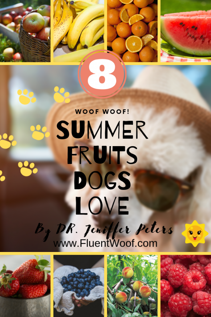 summer fruits that dogs can eat