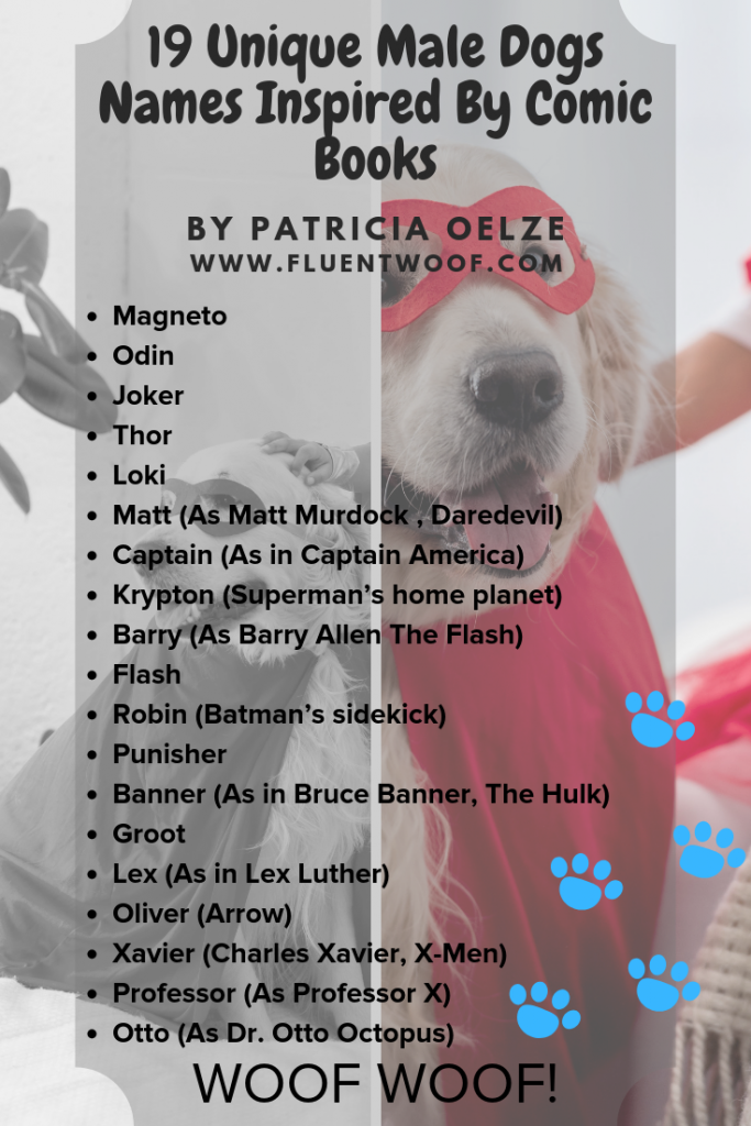24 Unique Dog Names Inspired By Comic Books