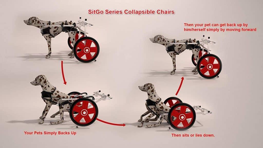 Best Friend Mobility SitGo Dog Pet Wheelchair Revolution