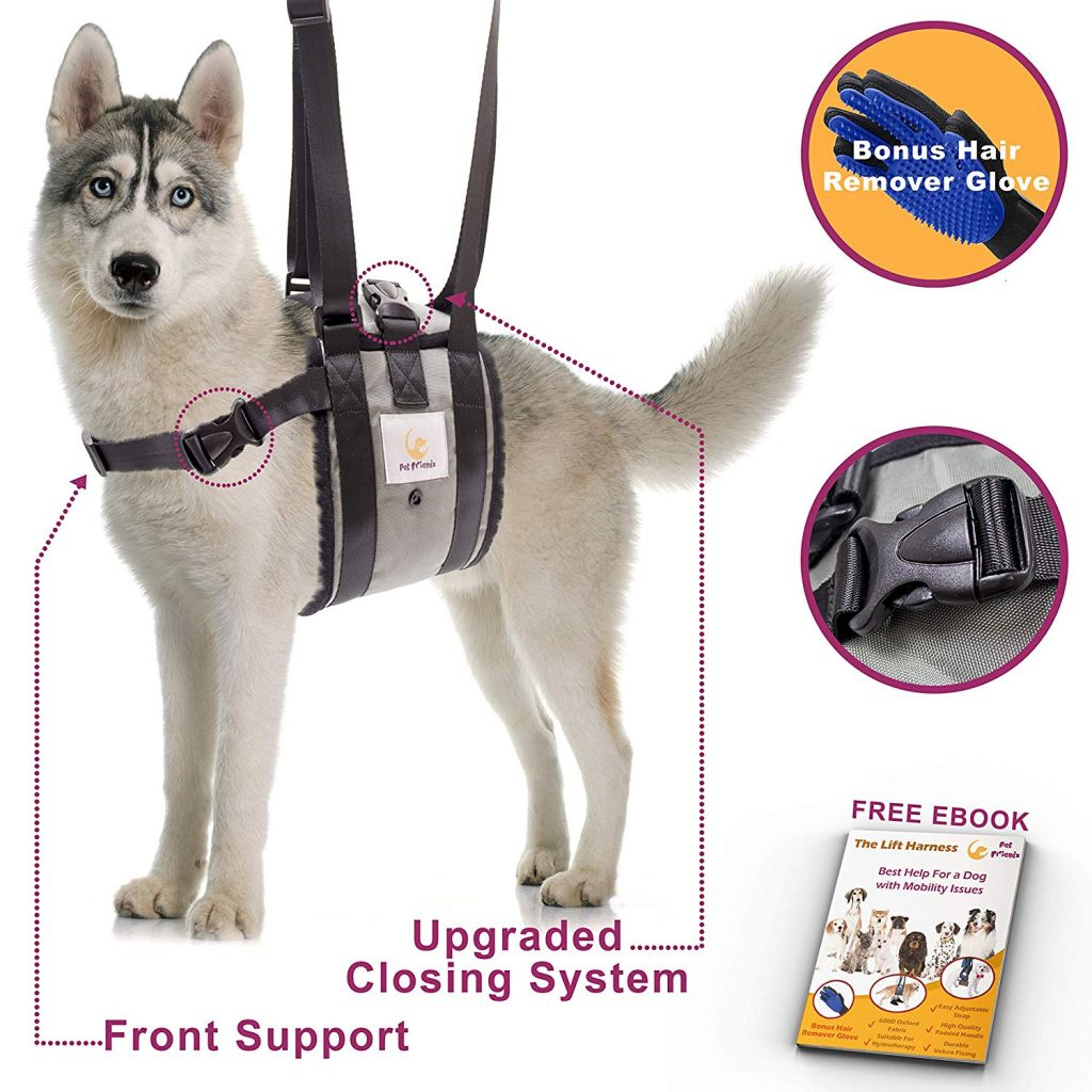 Dog Support Harness by Pet Friendz