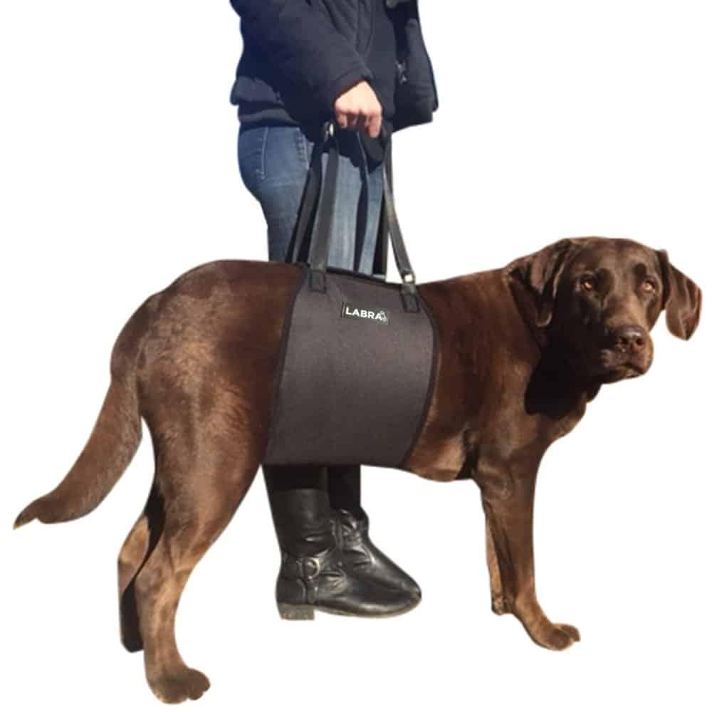 Labra Veterinarian Approved Dog Canine K9 Sling Lift