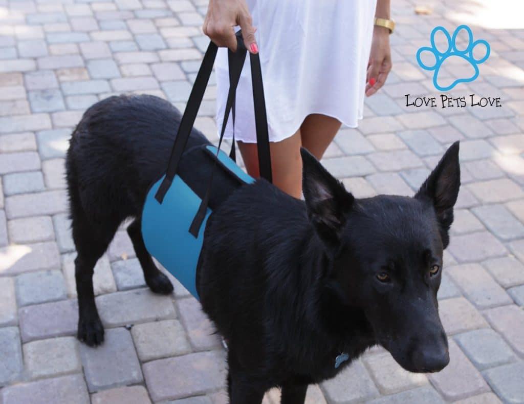 Love Pets Love Vet Approved Dog Lift