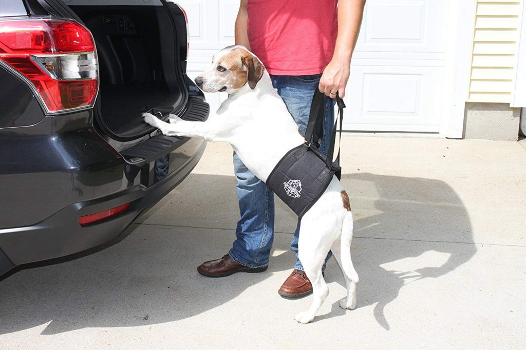 My Busy Dog Lift Support Sling