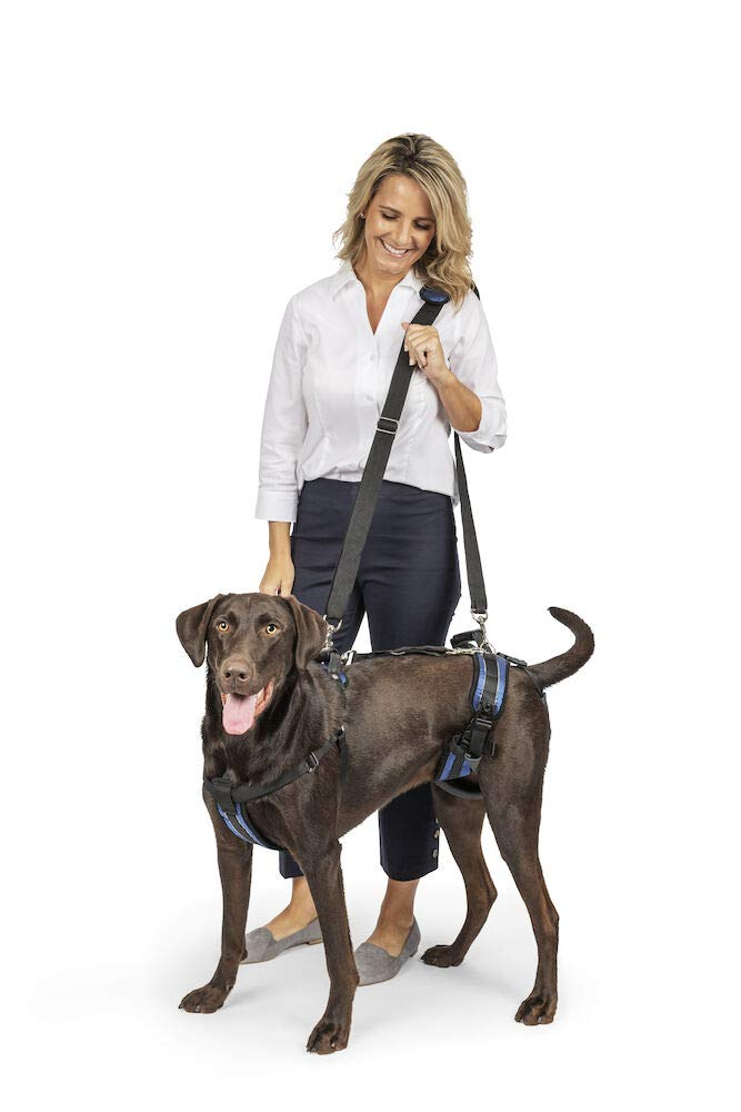 PetSafe Solvit Lifting Aid for Full Front and Back