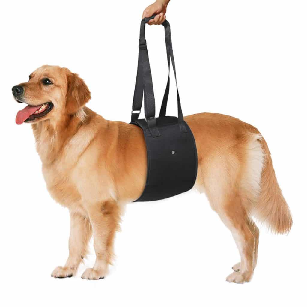 Petetpet Dog Lift Support Harness