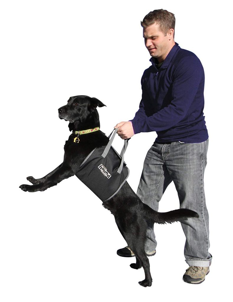 PupBoost Lift Harness for Dogs