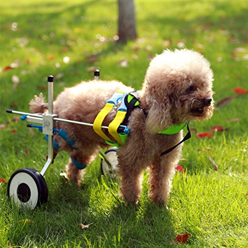 Two Wheels Adjustable Dog Wheelchair, cart, 7 Sizes for hind Legs Rehabilitation