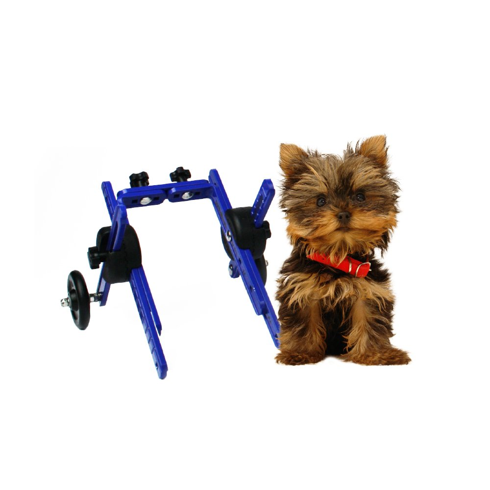 Walkin' Wheels Dog Wheelchair -XS for Toy Breeds 2-10 lbs-Veterinarian Approved - Wheelchair for Back Legs