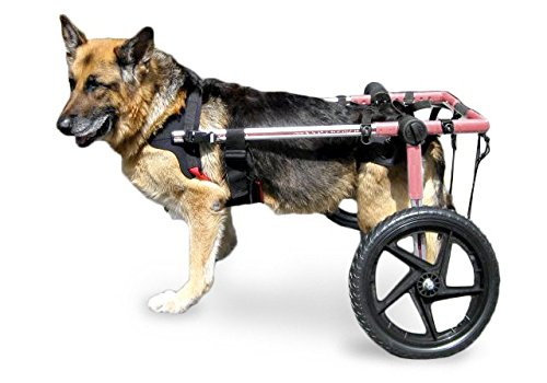 Walkin' Wheels Dog Wheelchair - for Large Dogs 70-180 lbs - Veterinarian Approved - Wheelchair for Back Legs