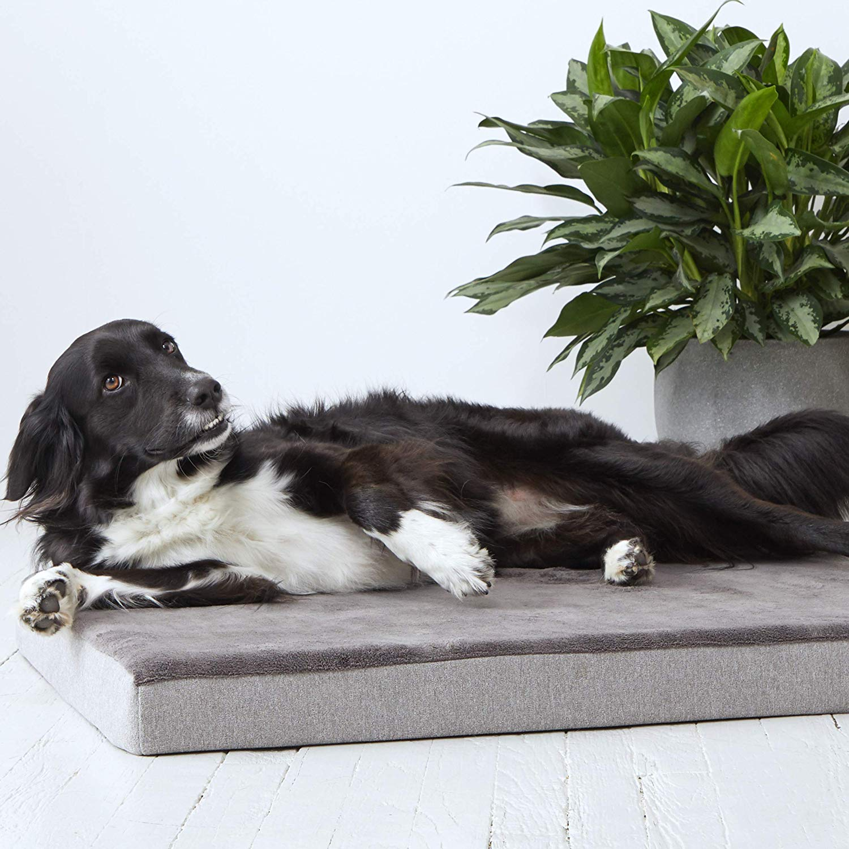 BarkBox Memory Foam Dog Bed Plush Orthopedic Joint-Relief