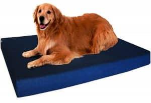 dogbed4less Premium Orthopedic Memory Foam Dog Bed
