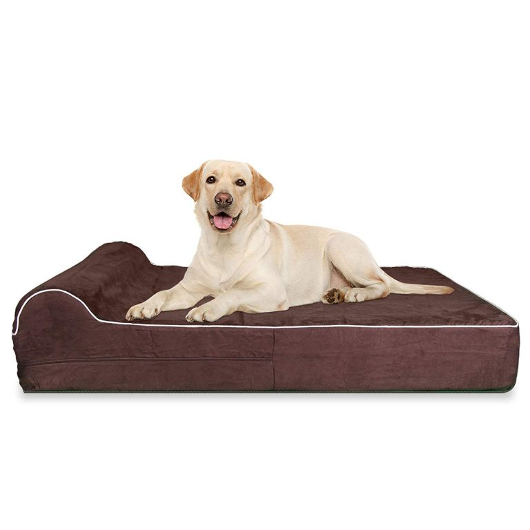 kopeks Orthopedic Memory Foam Dog Bed With Pillow and Easy to Wash Removable Cover with Anti-Slip Bottom
