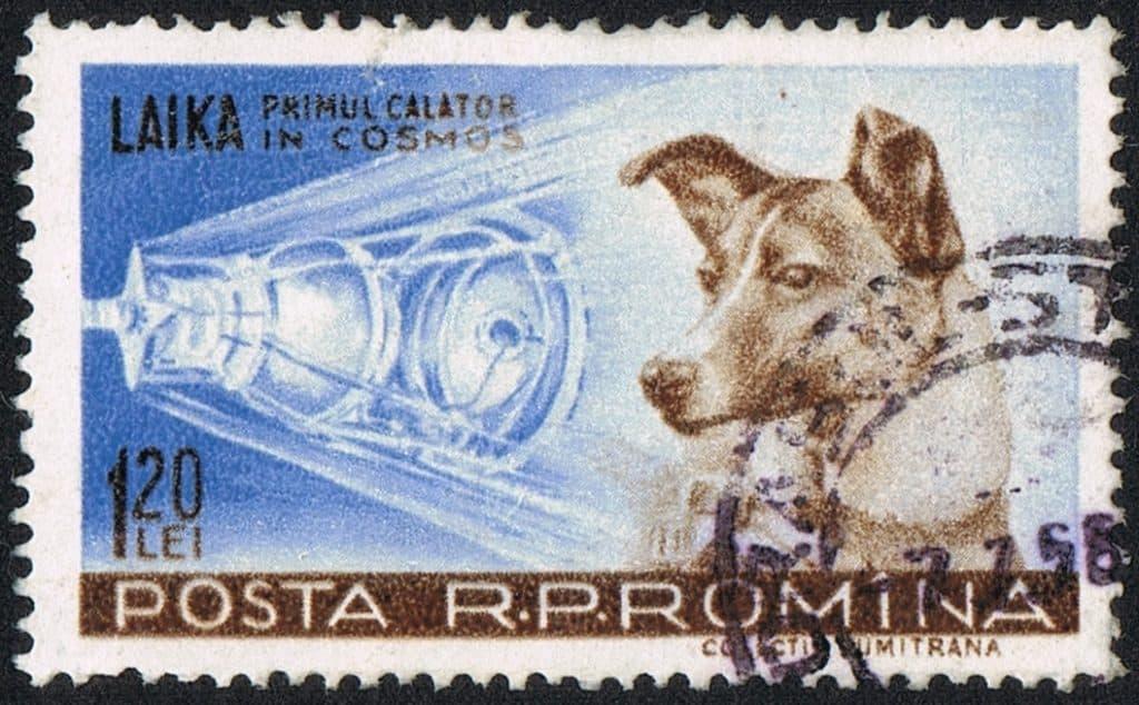Romanian Laika Stamp 1959