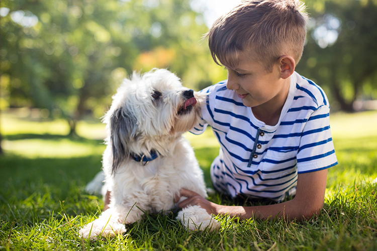 Owning a Dog May Help Protect Children From Allergies