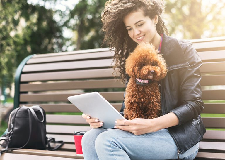 Checklist for Traveling with Your Dog