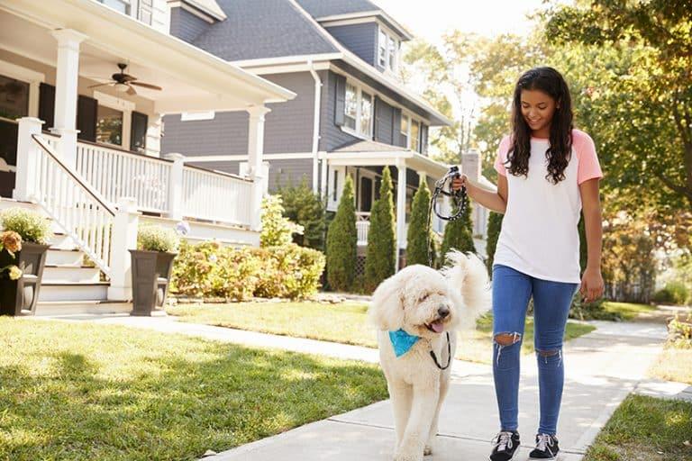 Take a Walk around the Neighborhood