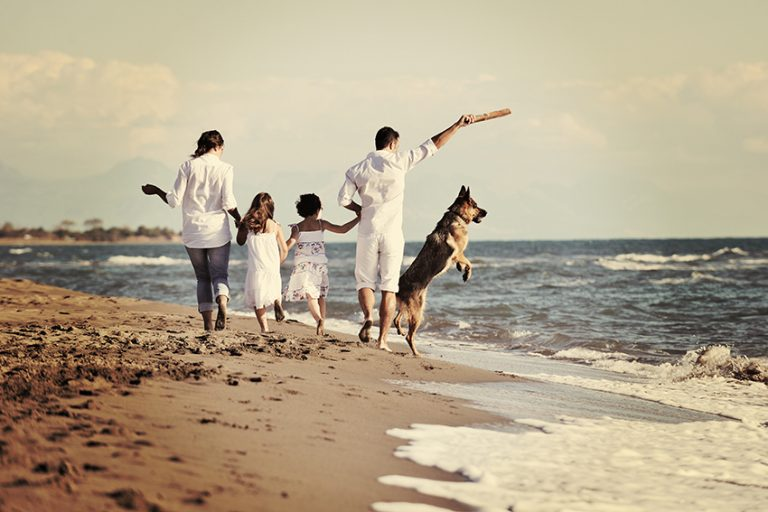 benefits of having a dog - for better health