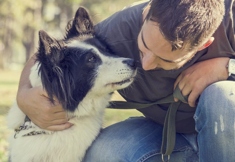 dog help with Addiction Recovery