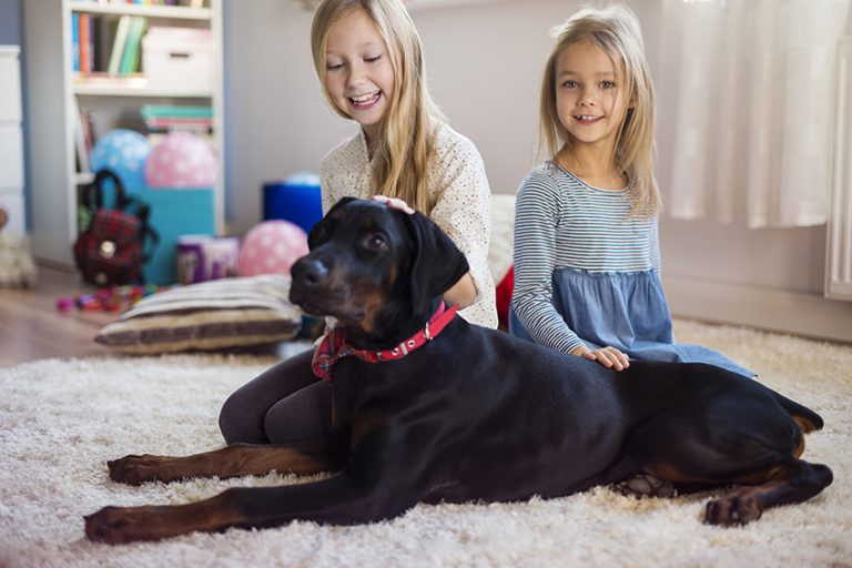 dogs Teach Kids About Loyalty