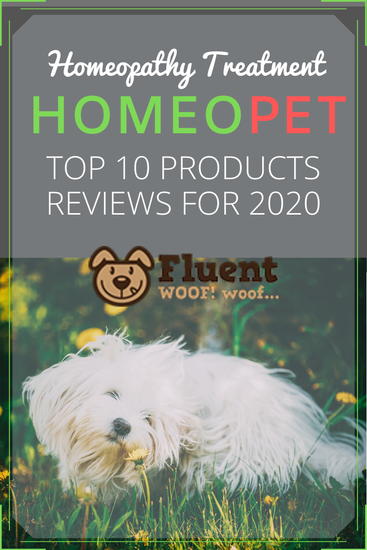 homeopet reviews homeopathy for dogs -pin