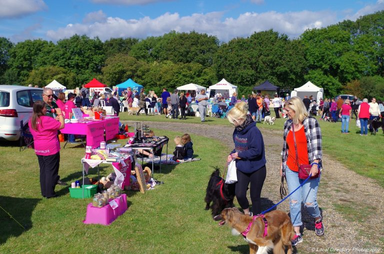 Isle Of Wight Dog Festival