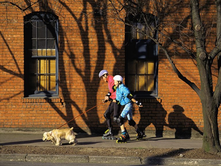 Rollerblading with your dog
