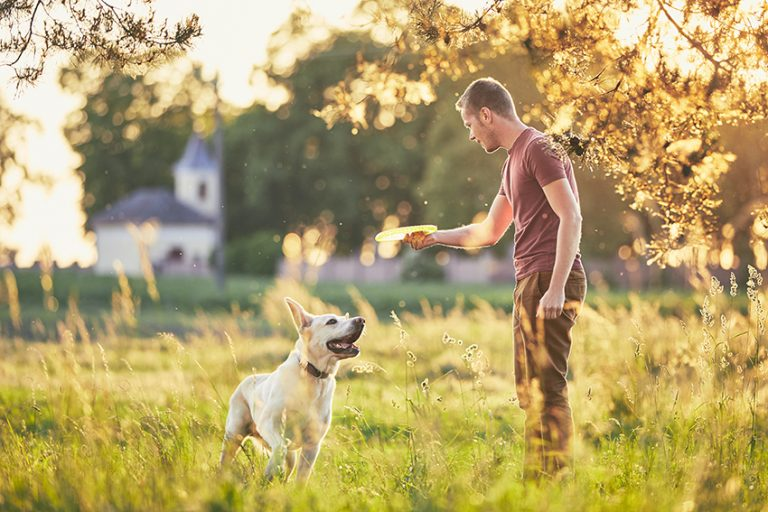 outdoors activities to do with your dog