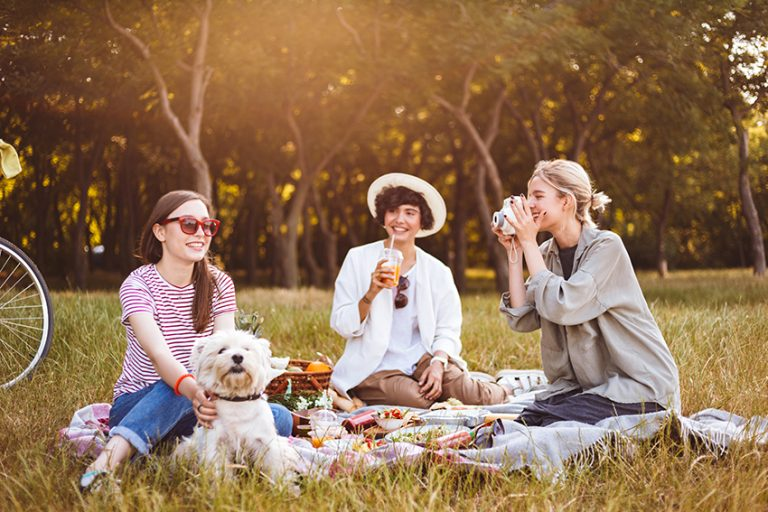 picnic with your dog