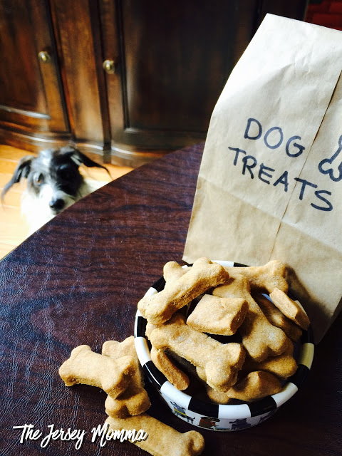 Easy 2 Ingredient Dog Treats