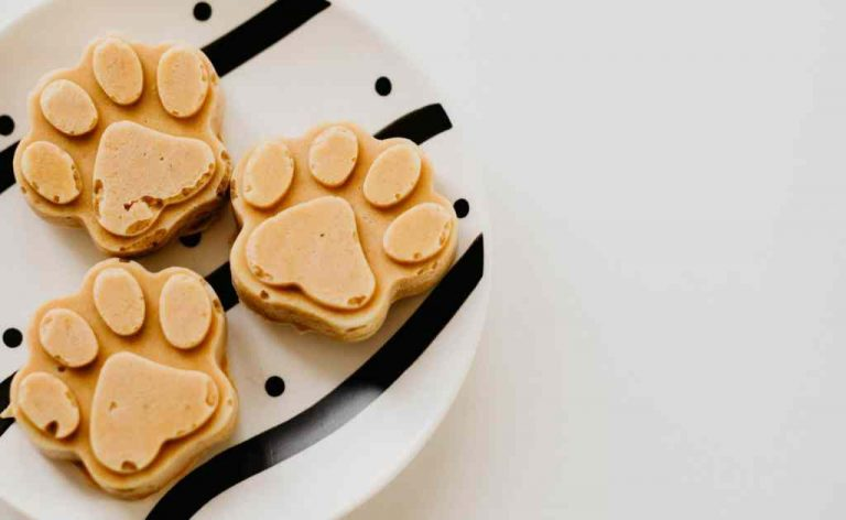 Easy Homemade Pumpkin & Peanut Butter Dog Treats