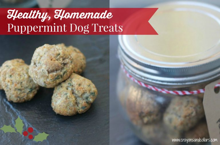 Healthy, Homemade Puppermint Dog Treats