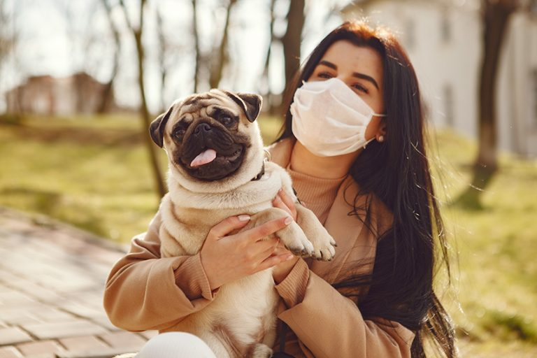 What Should I Do Differently With My Dog If I Have Coronavirus?