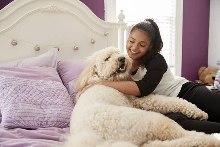 dog cuddling