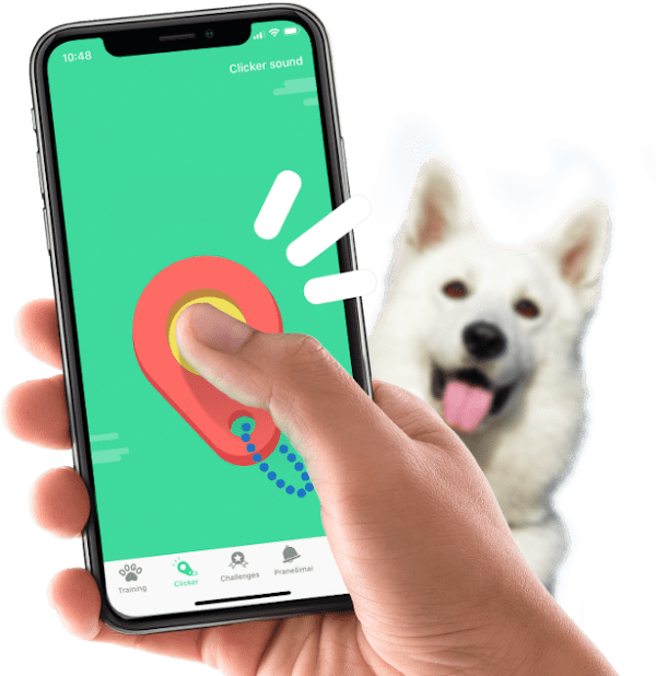 dogo app clicker training