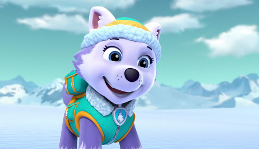 Everest, the Siberian Husky breed paw patrol