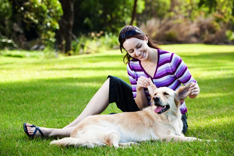 Avoid Checking Your Dog's Ears Around Your Young Children
