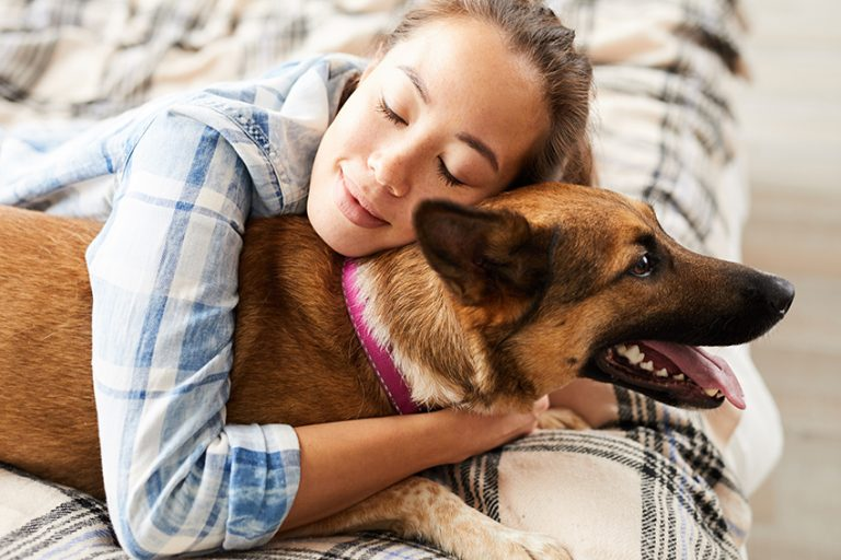 Comparison of Canine and Human Sleep Cycles