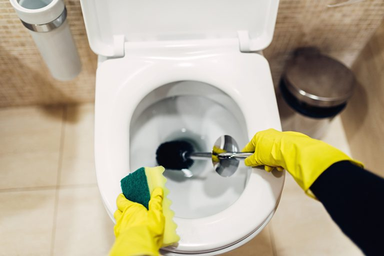 Orange Drink or Vinegar + Water for Toilet Bowls