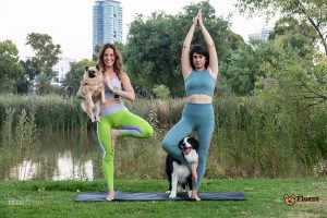 doga dog yoga