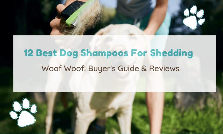 dog shampoo for shedding