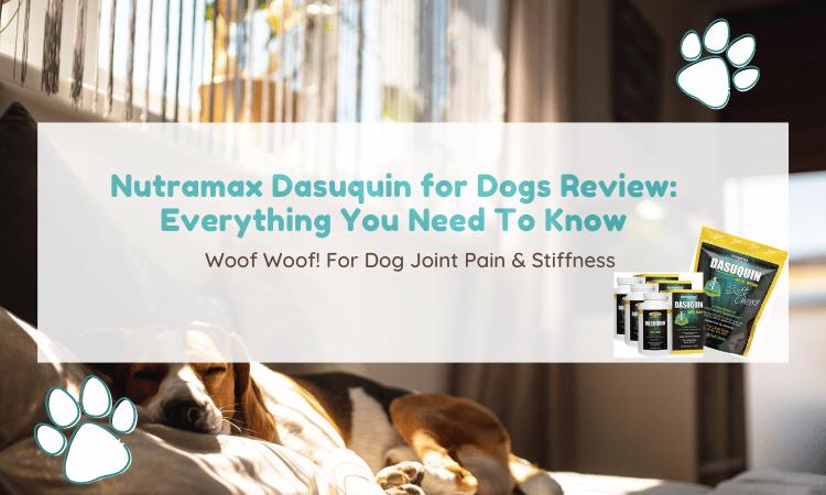 dasuquin review