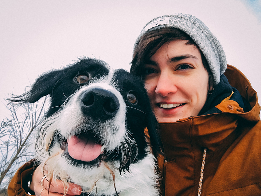 be proactive about your dogs winter safety
