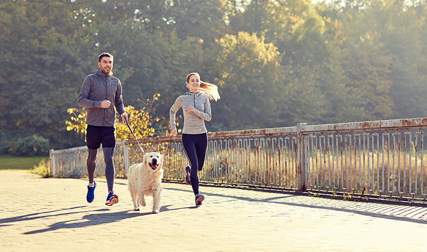 Best Age to Start Running With Your Dog