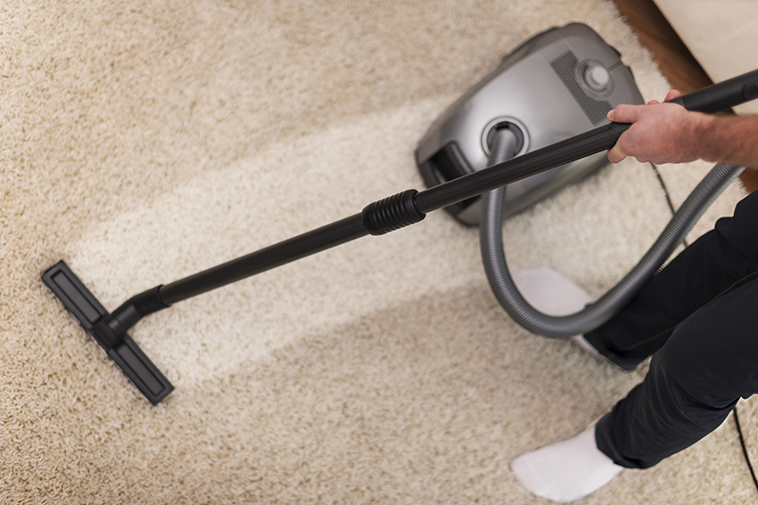 Removing Dog Odor From Your Carpet