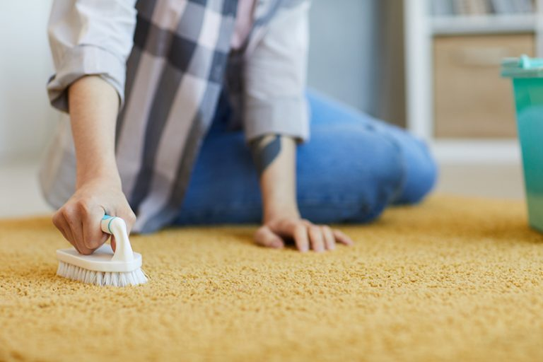 Removing Dog Poop Stains Off the Carpet