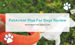 petarmor plus for dogs review