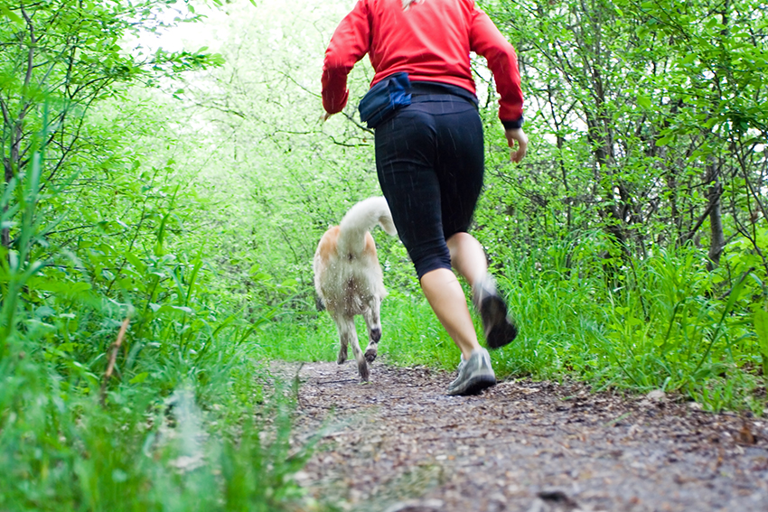 running with your dog