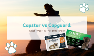 capstar vs capguard